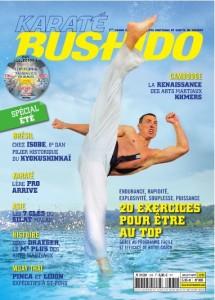 Karate Bushido #385