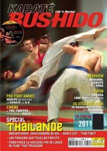 Martin Wheeler dans Karate-Bushido